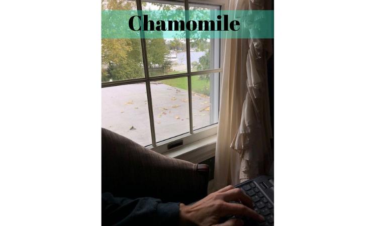Chamomile Room